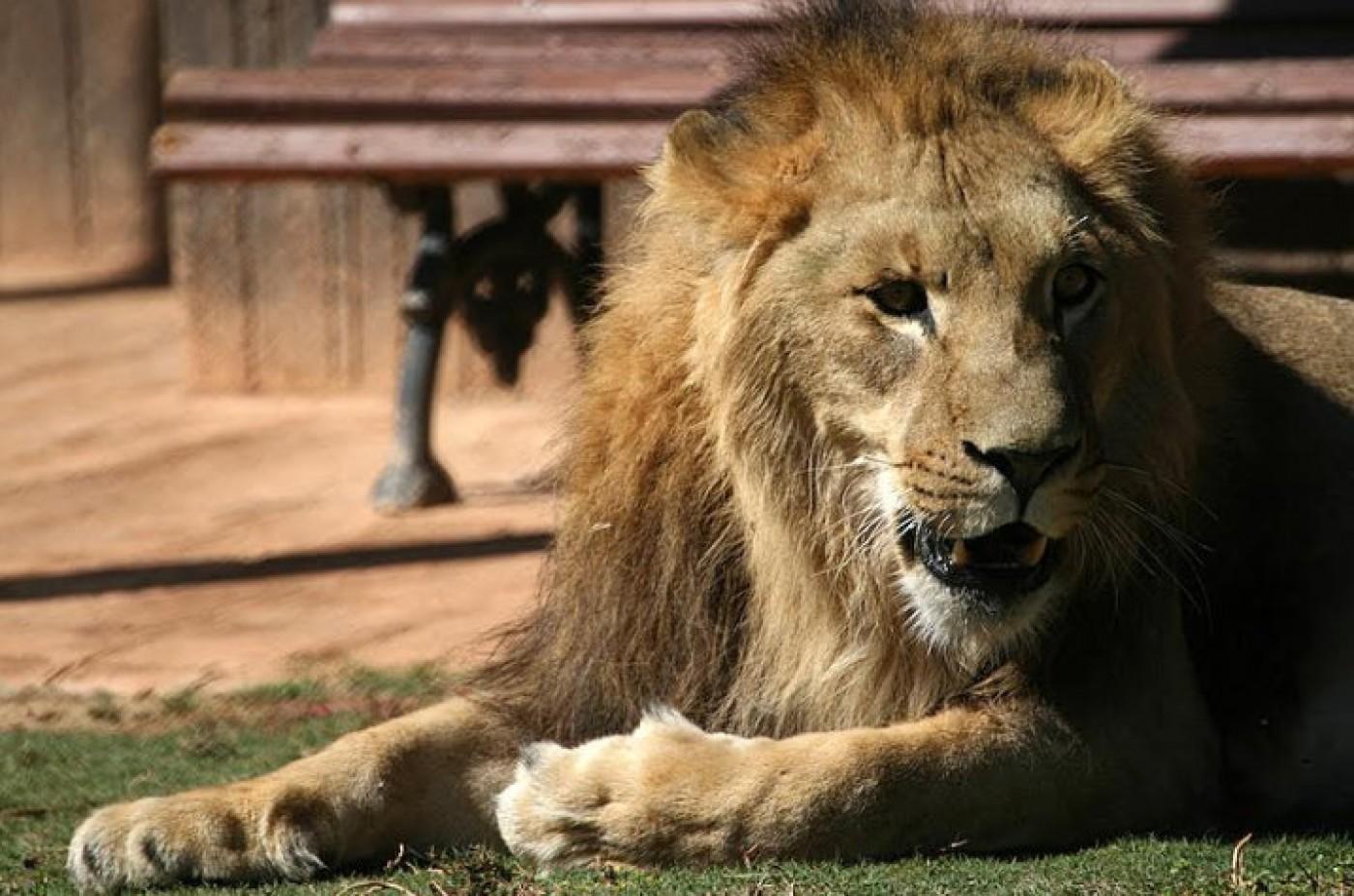 Terra Natura Murcia Animal & Wildlife Park