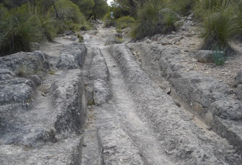 Walking in Sierra de La Pedrera in Jumilla
