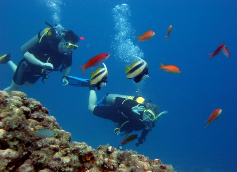 Dive locations in and around Águilas