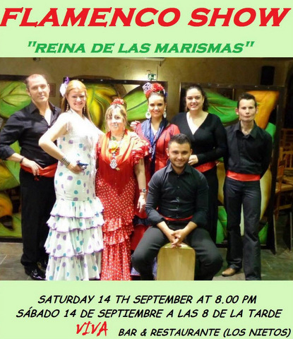 <span style='color:#780948'>ARCHIVED</span> - Sat 14th September, Flamenco music and dance, Viva Los Nietos