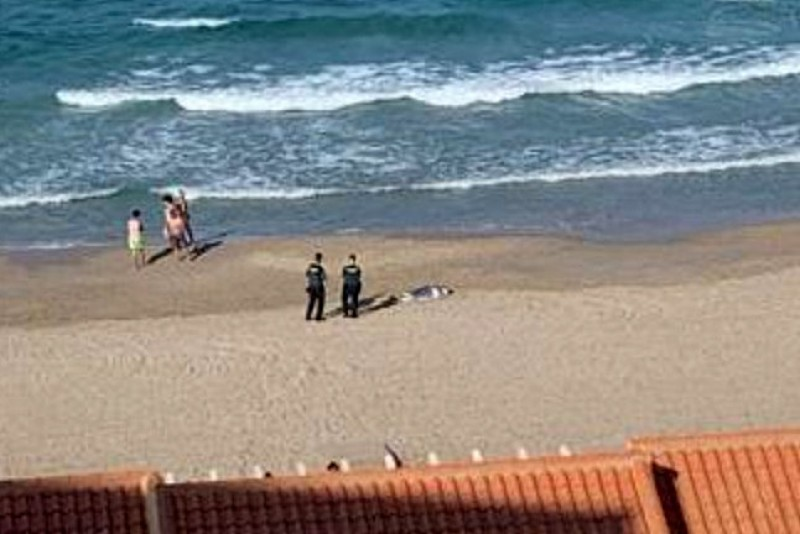 <span style='color:#780948'>ARCHIVED</span> - Slovakian woman drowns at the beach in La Manga