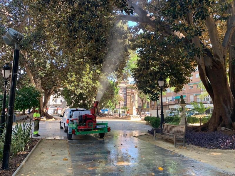 <span style='color:#780948'>ARCHIVED</span> - Safety showers to prevent monster trees collapsing in Murcia City