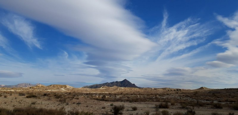 <span style='color:#780948'>ARCHIVED</span> - Murcia region buys three new areas of wetlands and salt marshes to guarantee their conservation