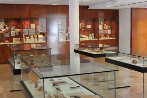 The Museo de Siyâsa in Cieza