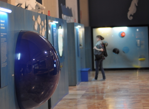 Museums in Murcia City, El Museo de la Ciencia y el Agua