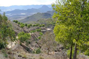 Sierra de las Herrerías, Leiva ,Mazarrón.