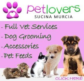 Pet Lovers Banner